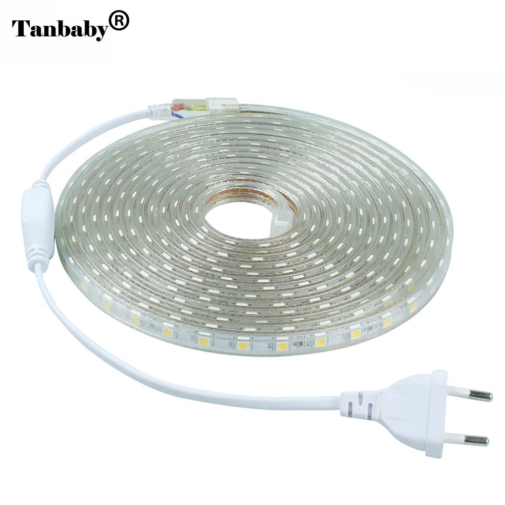 220V SMD 5050 LED Strip Light 60 LED/M IP67 Waterproof Outdoor Indoor Decoration Lighting Flexible Ribbon Tape + EU Plug