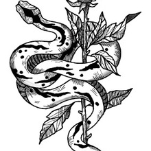 e10ab6172dfbd Water Transfer fake tattoo sticker sketch Rose flower snake tattoo  Waterproof Temporary Tatto flash tatoo for