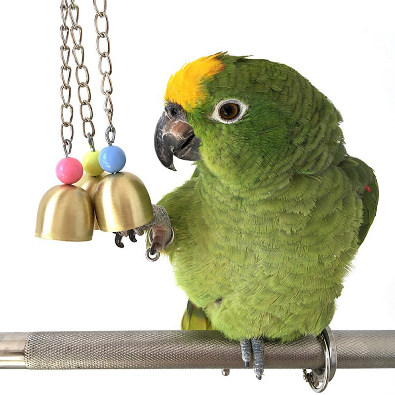 Pet Parrot Bell Chewing Toy Pigeon Cockatiel Parrot Booth Bite Game Good Sound Favorite Toy Bird Cage Accessories
