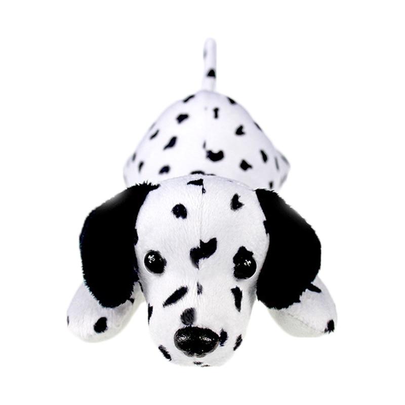 dalmatian dog_5