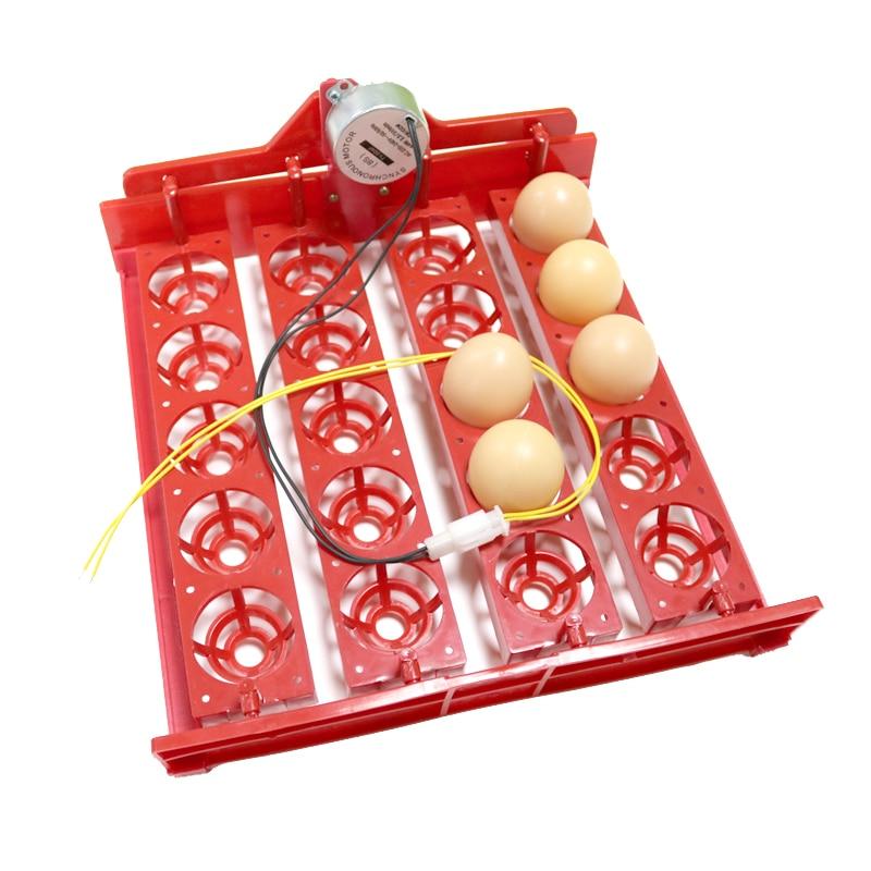 Aliexpress.com : Buy 20 Eggs Turn Tray Incubator Chickens ...