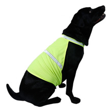 Pets Fluorescent Security Dog
