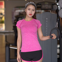 hot Women's professional fitness sports 2016 new quick-drying perspicuousness short-sleeve exercise clothes T-shirt running