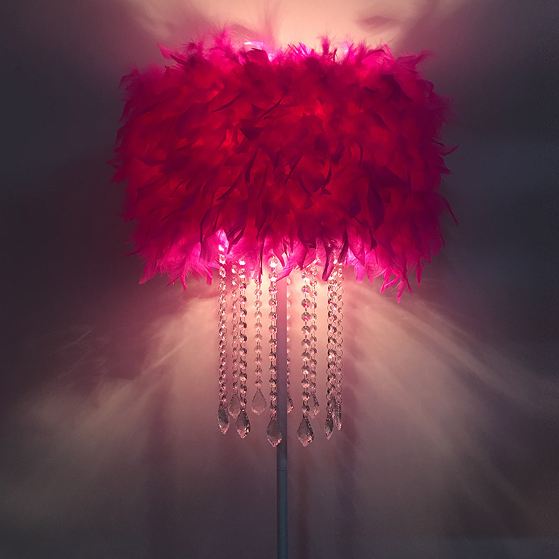 Crystal Lamp Home Lighting Living Room Feather Floor Lamp K9Dining ...