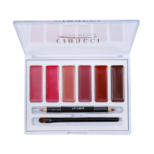 New Style Brand Lipstick Contour Kit Makeup 6 Colors Lip Gloss Palette Brilliant + 2 Color Double-end Lip Liner Pen & Lips Brush