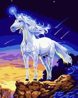 DIY Oil Painting Acrylic Paint Unicorn Digital Oil Painting Living Room Bedroom Decoration Art Animal Home