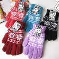 Outono e inverno das mulheres engrossar térmicas neve quente luvas de malha de inverno luvas de malha luvas de lã feminino