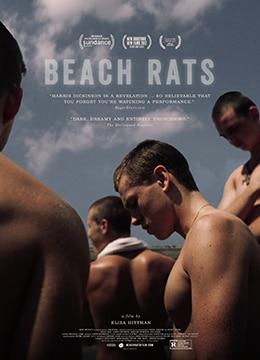 《沙滩鼠》2017年美国剧情,同性电影在线观看