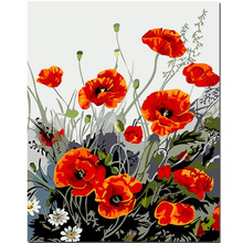WONZOM Red poppy flower-Diy Oil Painting By Numbers Kits, Wall Art Picture, Paint Number On Canvas For Arts, Acrylic