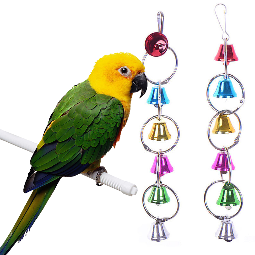 Bird Toys For Birds : Colorful bird toys ringer birds parrot conure caique