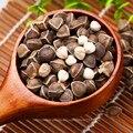 10 шт. Китайский Moringa семена, Съедобные семена, семена Главная Сад Завод, открытый сад пищи дерево Семена бесплатная доставка