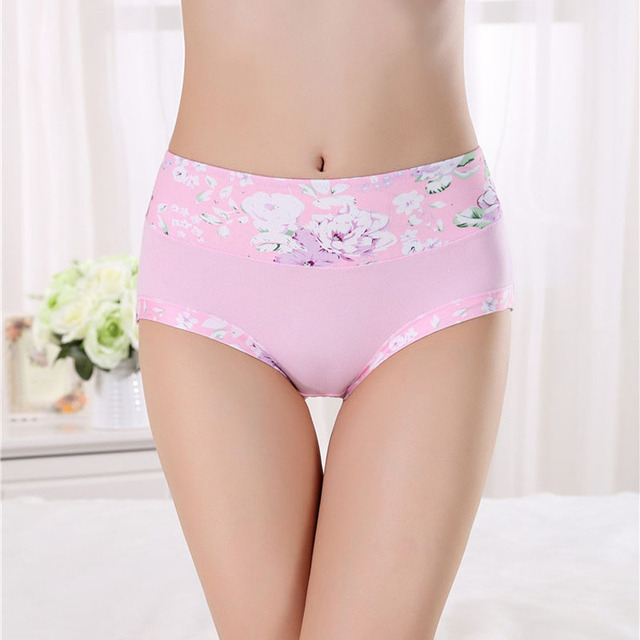 Women Underwear Panties Seamless Sexy Briefs