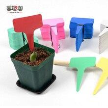 Nursery Plant Tag T-type Plastic Label Garden Pots Planters Flower Thick Marker 5pcs /6*10cm