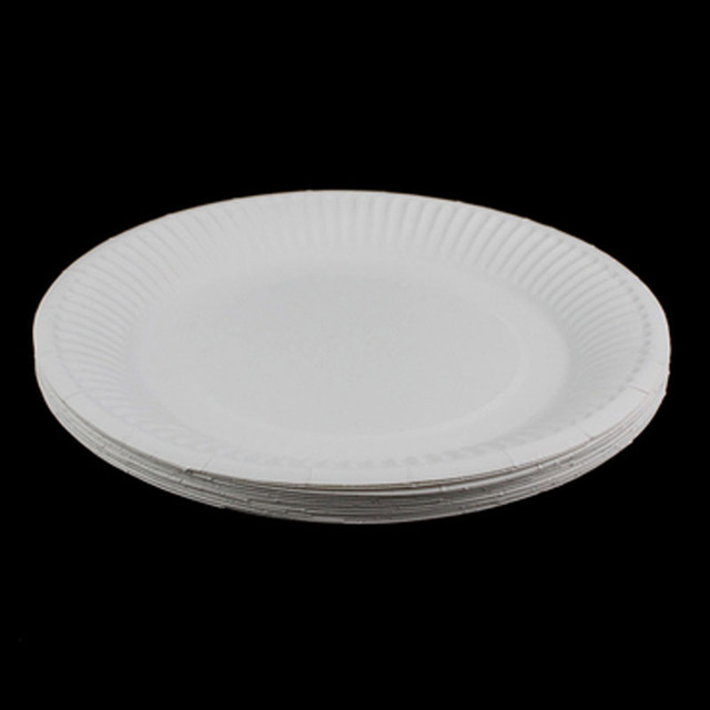 20PCS Disposable Party white Paper Plates for Home Party Decoration Supplies people use Kids Birthday Party & 20PCS Disposable Party white Paper Plates for Home Party Decoration ...