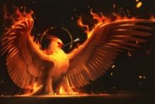 on Phoenix Bird Paintings