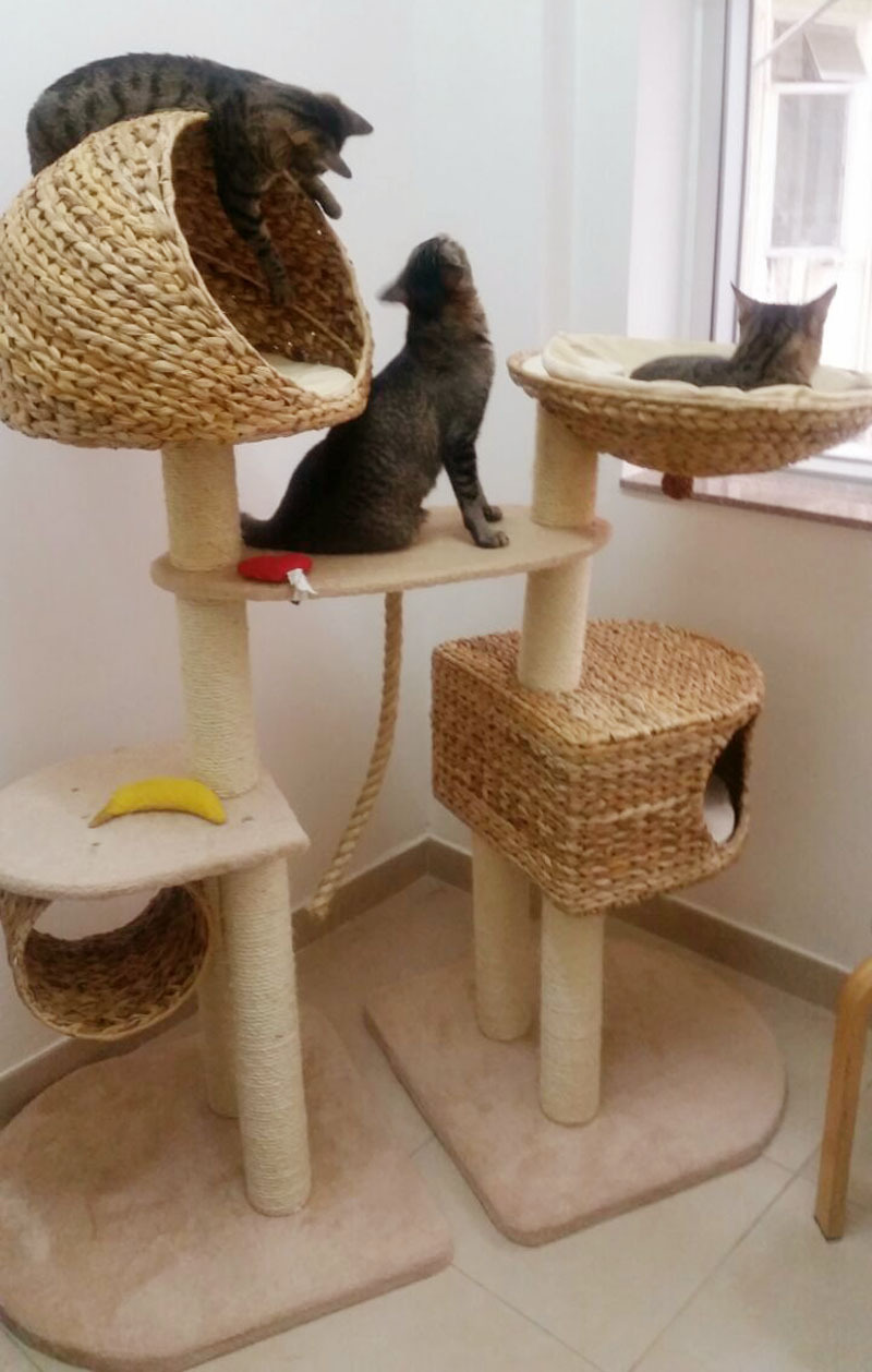 fancy pet furniture. Lovely Cat Houses ,Large Luxury Pet Furniture , Scratching Post For Cats-in Beds \u0026 Mats From Home Garden On Aliexpress.com | Alibaba Group Fancy R