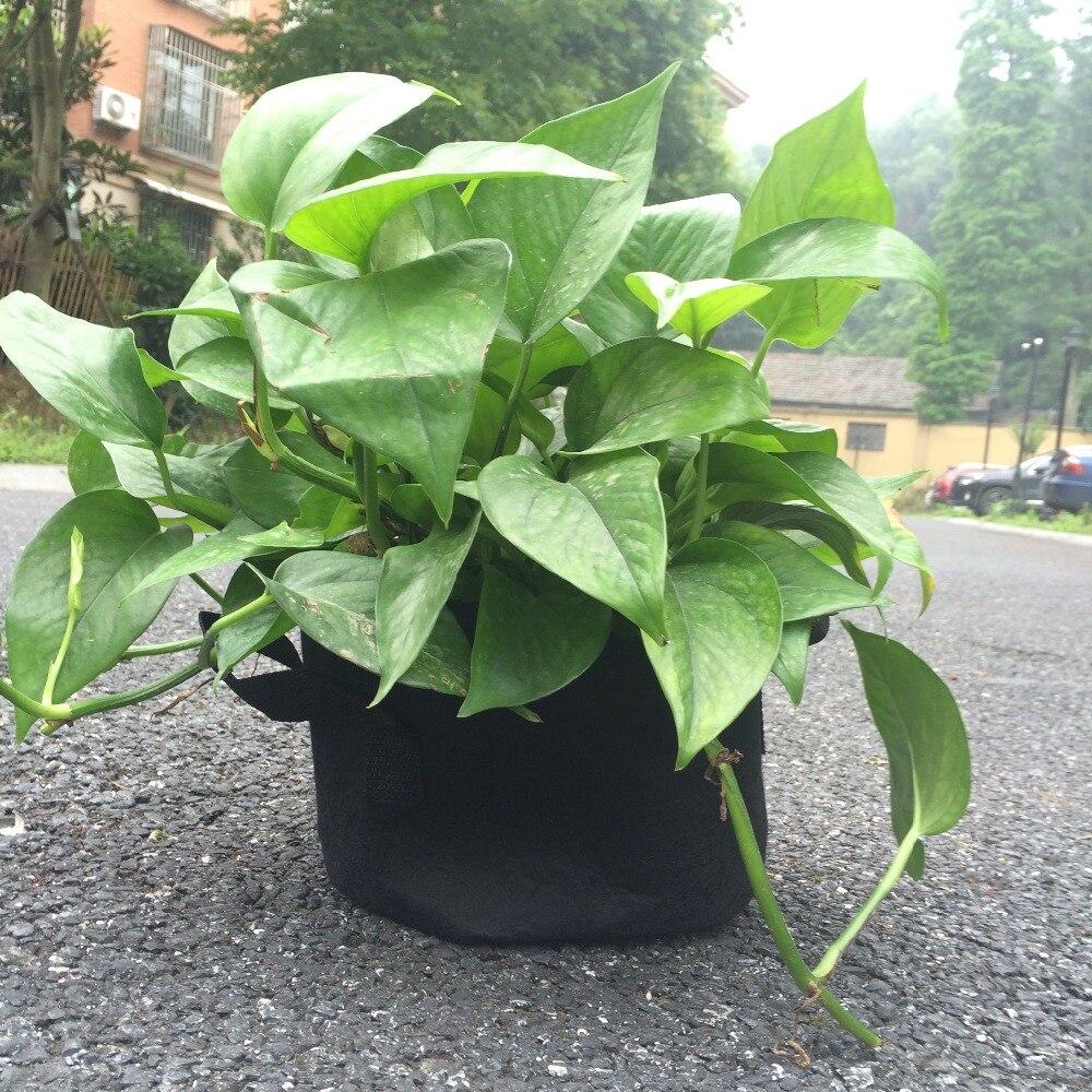 Potten Voor Planten.Us 12 38 9 Off 10 Stuks Dikke Zwarte Stof Potten Planten Plantaardige Zakje Wortel Beluchting Recipienten Ronde Pot Container Plant Groeien Zak