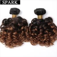 Spark Brazilian Bouncy Curly Hair Bundles 1/3/4pcs 1B/4/30&27 Ombre Color Remy Human Hair Extensions Curly Hair Weave Bundles