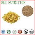 900g de Alta qualidade do Malte/Fructus Hordei Germinatus/grist/Extrato de germe de trigo com frete grátis