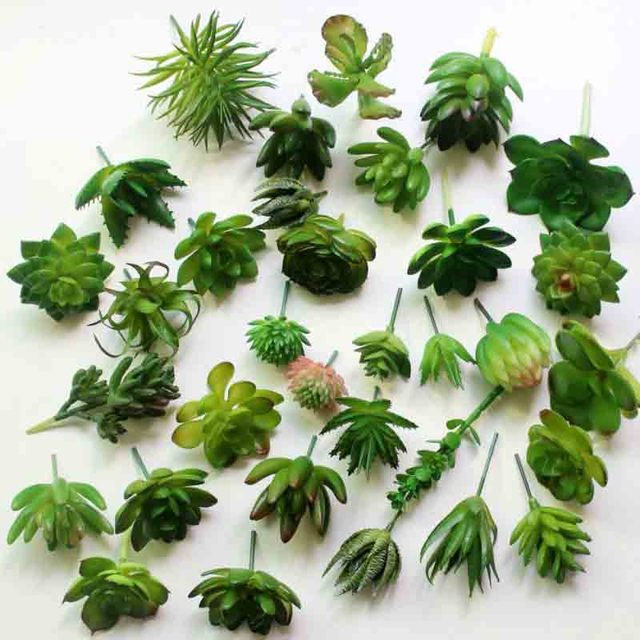 mini plantas suculentas artificiais falso suculenta bonsai suculenta pl stico flor de lotus land. Black Bedroom Furniture Sets. Home Design Ideas
