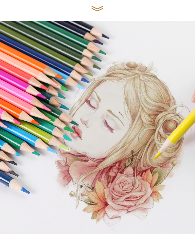 Oil Colored Pencils