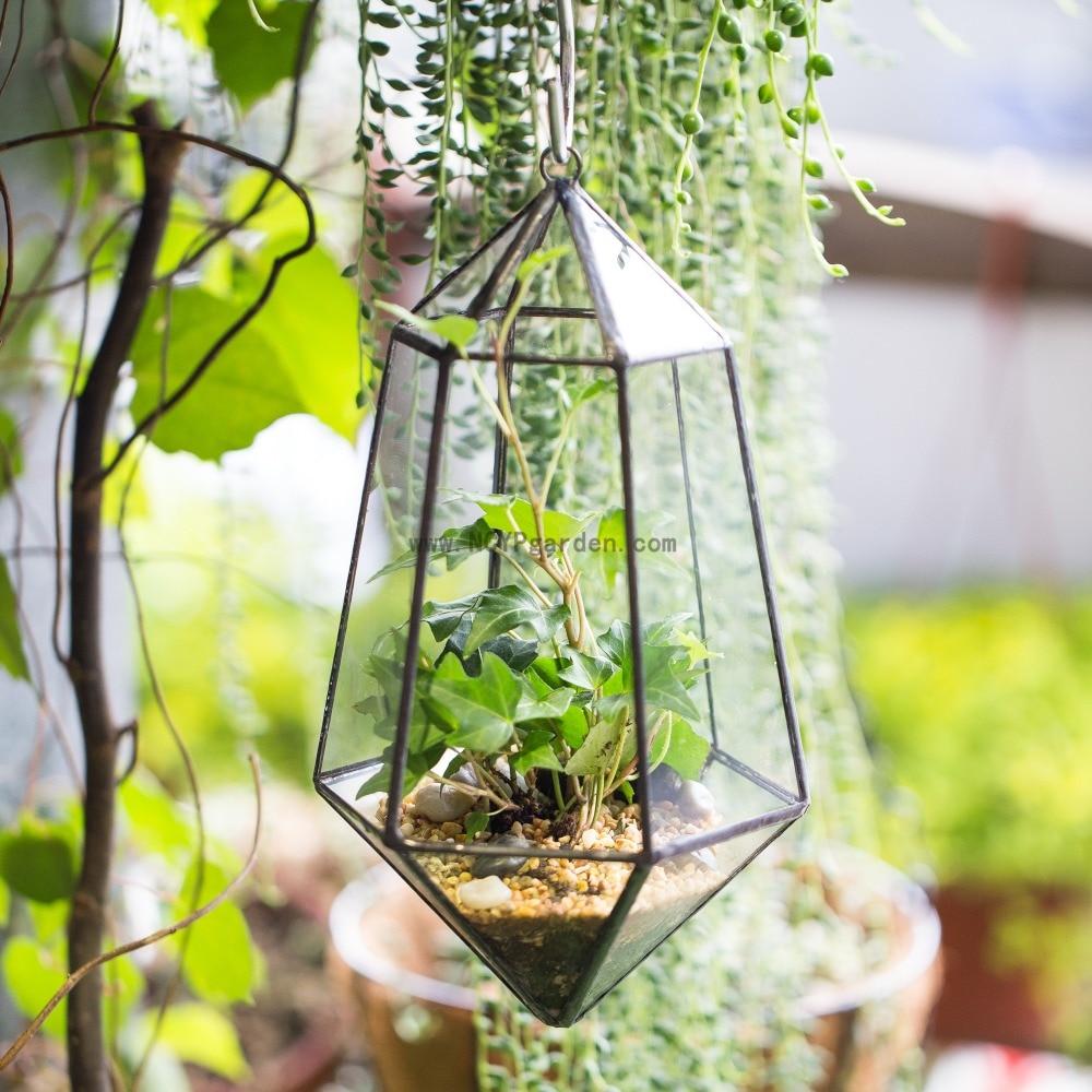 Wall Hanging Artistic Clear Glass Geometric Terrarium Diy Six-surfaces Diamond Succulent Moss Plant Terrarium Bonsai Flower Pot