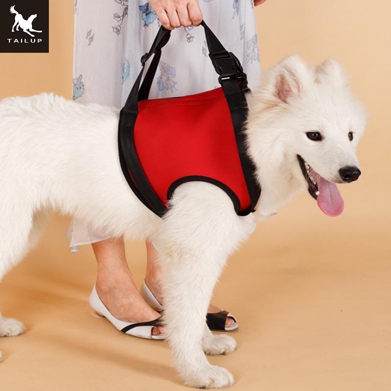 Mbështetëse për ngritjen e qenve TAILUP Për forcimin e Foreleg K9 - Produkte për kafshet shtëpiake