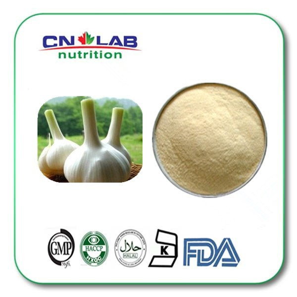1kg Manufacturers Supply America Garlic chives extract  Allicin  with Best Price manufacturers to supply high quality 100g wild chrysanthemum extract 30 1