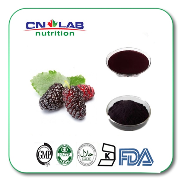 1kg/lot Hot Sale mulberry extract 15% OPC ,Anthocyanin powder  ISO , Kosher FDA