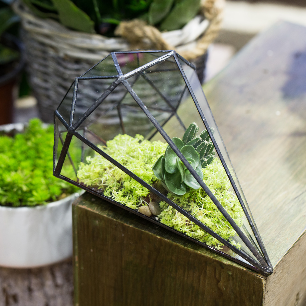 Kaca buatan tangan Terrarium Succulents Geometric Planter Indoor Plant Flowerpot Octahedral Tabletop Bonsai Pot Garden Decoration