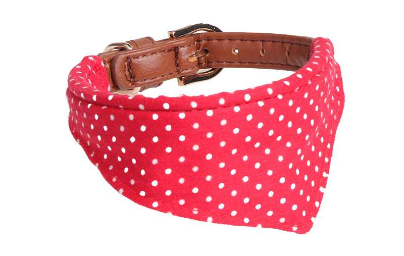 dog scarf collar