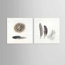 2 Panel Long feather Modern style Wall pictures for living room canvas painting wall art Room decoration(China)