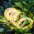 Floresan lamba LED Sıcak Beyaz Renk Açık Işık Dize Güneş Bakır Dekoratif Işık USB Hortumu Bahçe Bahçe Fener