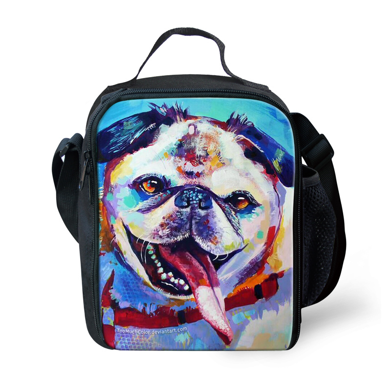 Cute Kids Lunch Box for Boys and Girls, Colorful Animal Lunchbox Bag for Kids,Thermal lunch Bag for Teenager Picnic Box,