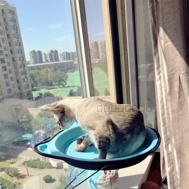 cat hammock bed removable cat window bed ultimate sunbathing cat window mounted cat lounger perch cushion cat hammock bed removable cat window bed ultimate sunbathing cat      rh   aliexpress