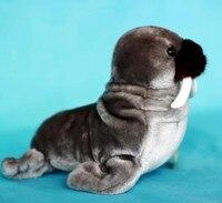 large 42cm gray Walrus , prone morse plush toy,soft throw pillow ,Christmas gift 0754