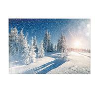 Winter Bath Rugs Fir Tree Snow Sunset Non Slip Doormat Floor Entryways Indoor Front Door Mat