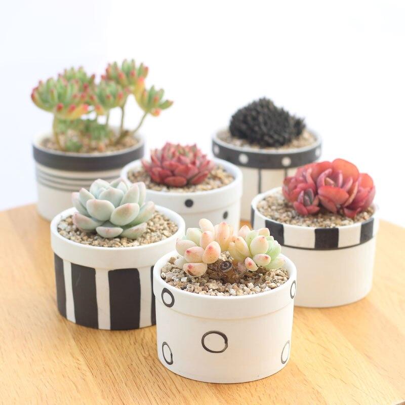Set of 6 Black Transmutation Glazed Ceramic Flowerpots Succulent Plant Pots Home Decorative Cactus Planters 6 Colors