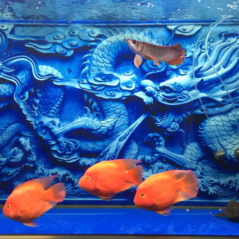 Us 17 85 25 Off Aquarium Decoration Fish Tank Decoration 3d Background Chinese Dragon Cameo Print In Decorations From Home Garden On Aliexpress