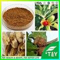 Высокое качество Withania Somnifera, ашвагандха Extract powder 300 г/лот