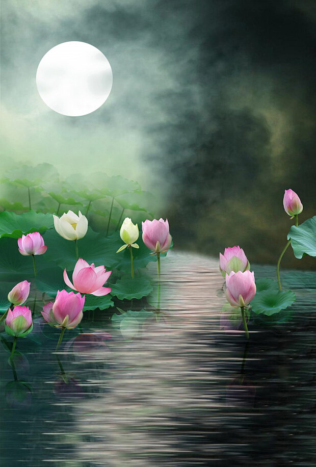 200cm150cm Backgrounds Night Moon Lotus Pond Flower Blooming The