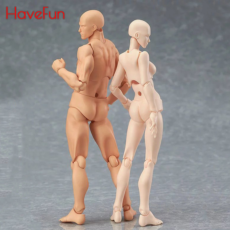 HaveFun Anime Archetype He She Ferrite Figma Movable BODY KUN BODY CHAN PVC Action Figure Model Toys Doll for Collectible drop original high quality body kun takarai rihito body chan mange drawing figure dx bjd gray color pvc action collectible model toy