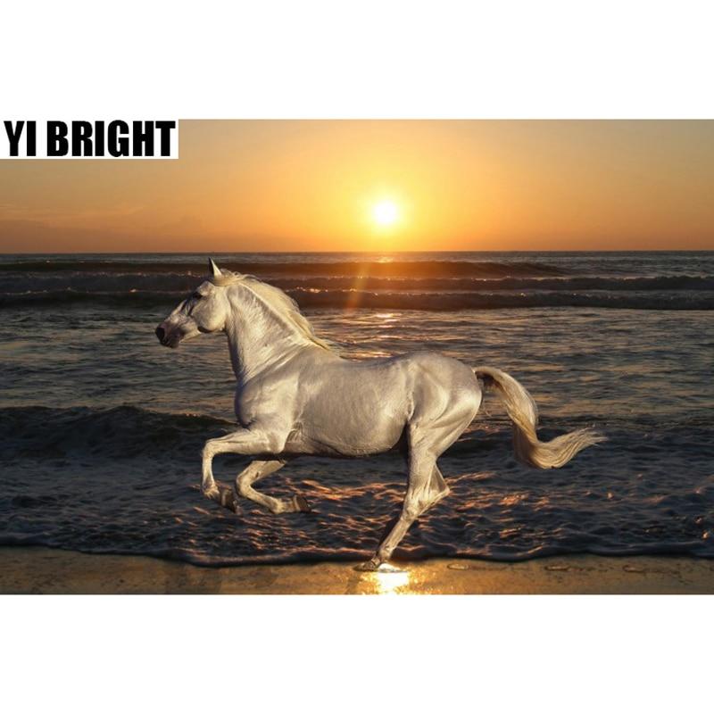 DIY Diamond Painting Cross Stitch Kits Diamond EmbroideryWhite Horse Run In Sunset&Seaside Full Diamond Mosaic Crafts Gift GT