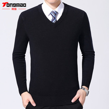 High Quality Men Sweater Autumn Winter Men Clothes Casual V-Neck Solid Long Sleeve Mens Pullovers Warm Cashmere Wool Sweater Top