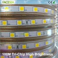 100 м Гибкие светодиодные SMD 5050 AC 220 В Высокая яркость 60 светодиодов/m Водонепроницаемый светодиодные ленты лента + ЕС Мощность Plug открытый дом
