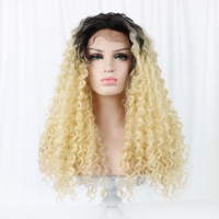 Lace Front Blonde Ombre Wig Long Curly Synthetic Wigs 24'' Afro Kinky Wig Fashion African Women Wigs Curly Hair Gray OEM HPLS001