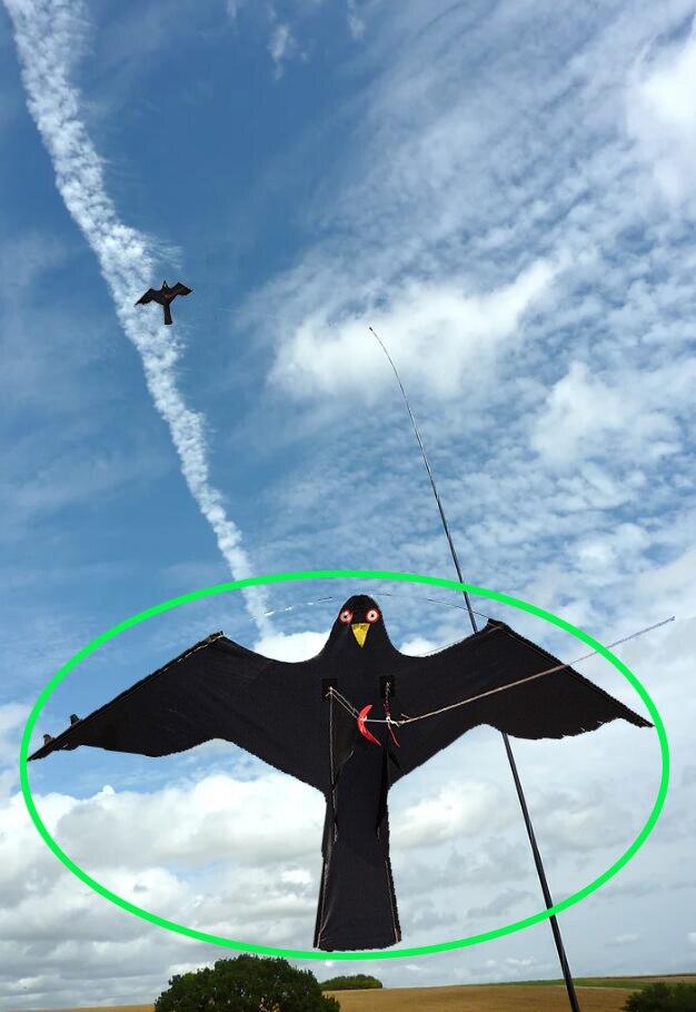 Hawk Kite groß wie ein Vogel Scarer Scarecrow Durchführung Vogel Control für Haus und Garten-Schwarz (Pol nicht enthalten)