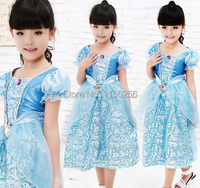Free Shipping Party Elsa Costume Halloween Costume For Kids Children S M L XL Princess Christmas