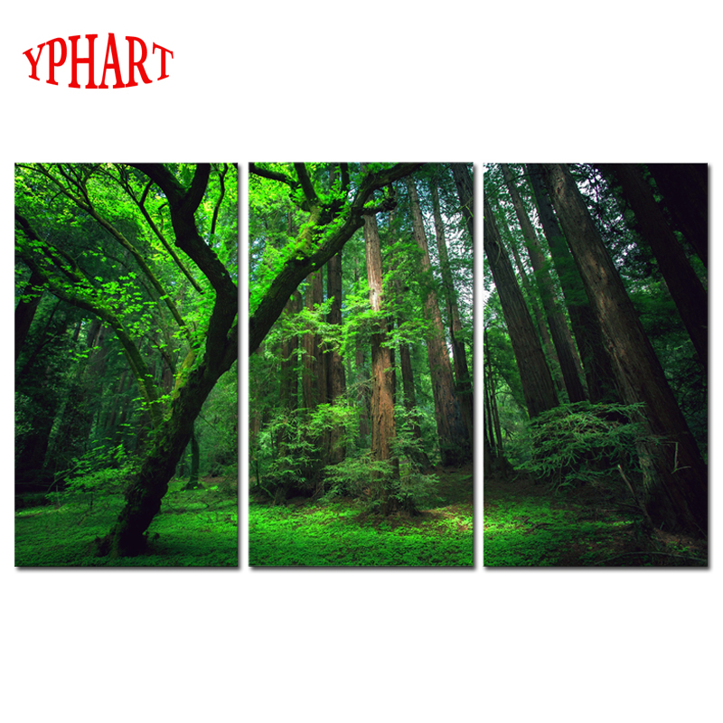 3 Panels Green Forest HD Canvas Print Painting Artwork Modern Home Wall Decor Painting Canvas Art