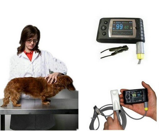 VET Pulse Oximeter, New Pulse Oxygen SPO2 Monitor CMS60C, with USB S/W Wireless bluetooth, CE & FDA , Free shipping